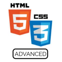 HTML5 and CSS3 for Responsive Web Design Advanced Live Hands-On Instructor-Led Training Class