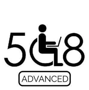 Web Accessibility Advanced Logo